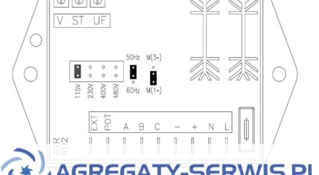 RD2 Sincro AVR Regulator Napięcia